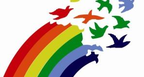 bandera_actual_cooperativismo